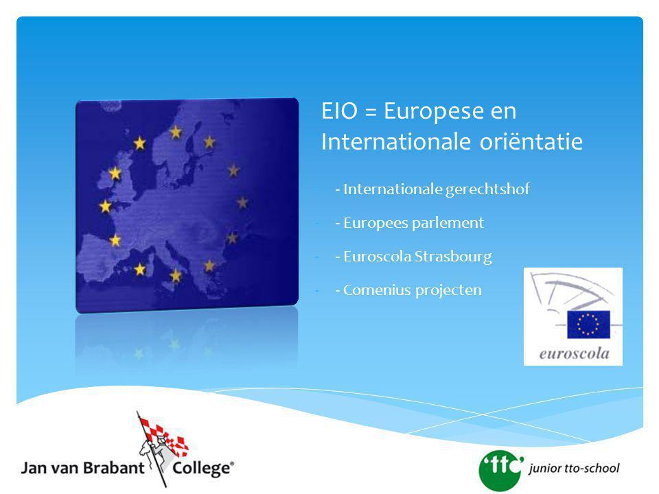EIO = Europese en Internationale oriëntatie -- Internationale gerechtshof -- Europees parlement -- Euroscola Strasbourg -- Comenius projecten