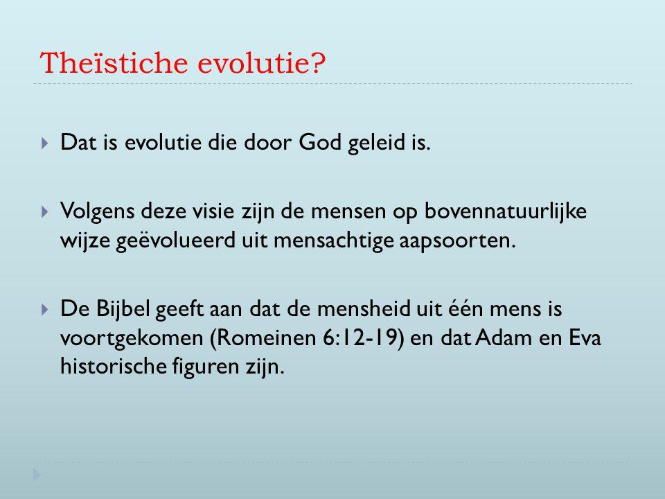 Theïstiche evolutie?  Dat is evolutie die door God geleid is.  Volgens deze visie zijn de mensen op bovennatuurlijke wijze geëvolueerd uit mensachti