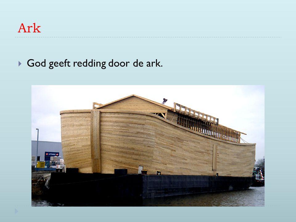 Ark  God geeft redding door de ark.