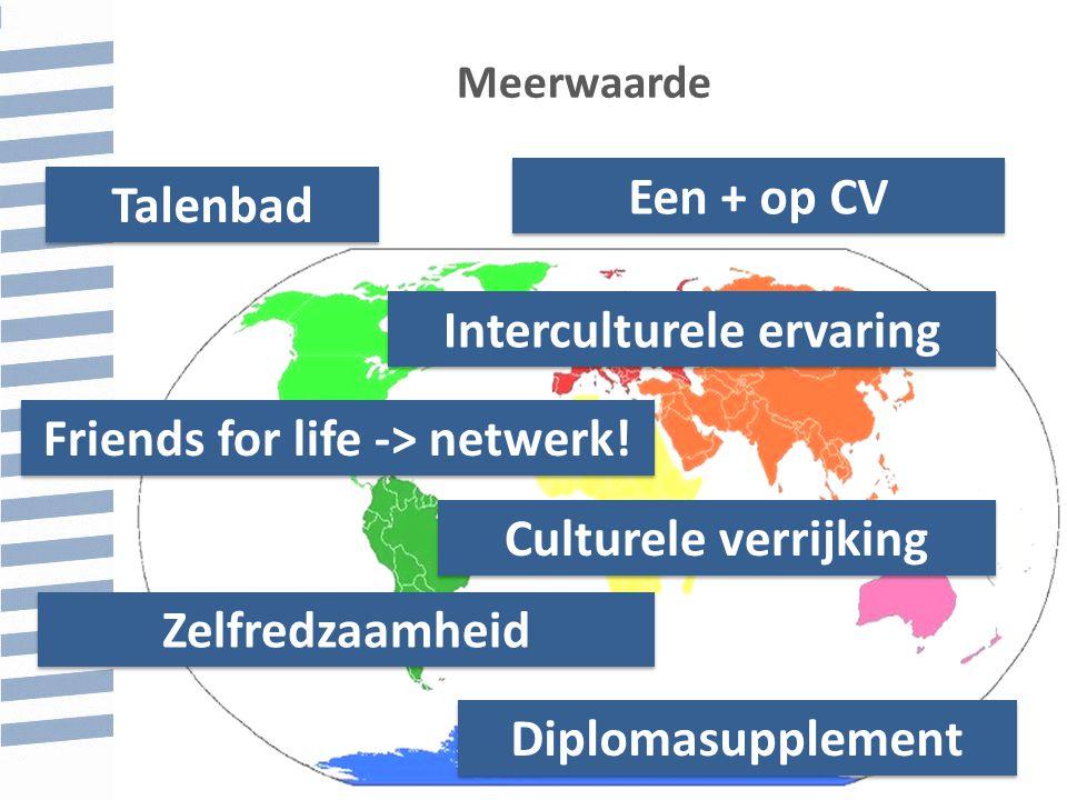 Talenbad Een + op CV Friends for life -> netwerk.