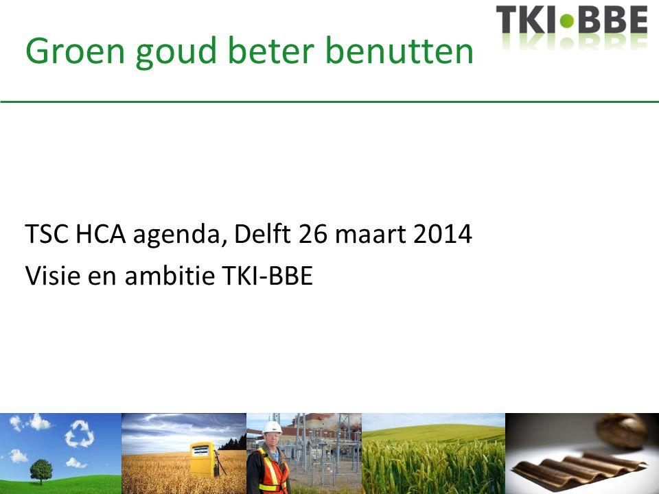 Groen goud beter benutten TSC HCA agenda, Delft 26 maart 2014 Visie en ambitie TKI-BBE