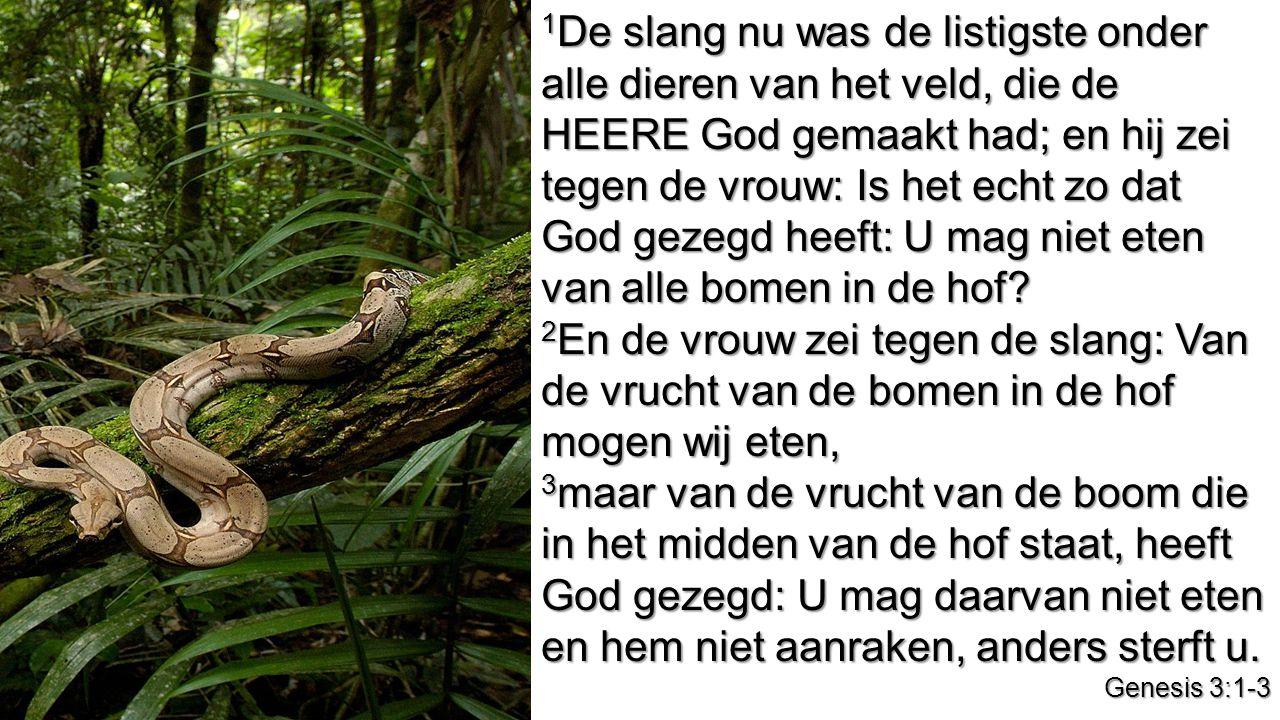1 De slang nu was de listigste onder alle dieren van het veld, die de HEERE God gemaakt had; en hij zei tegen de vrouw: Is het echt zo dat God gezegd