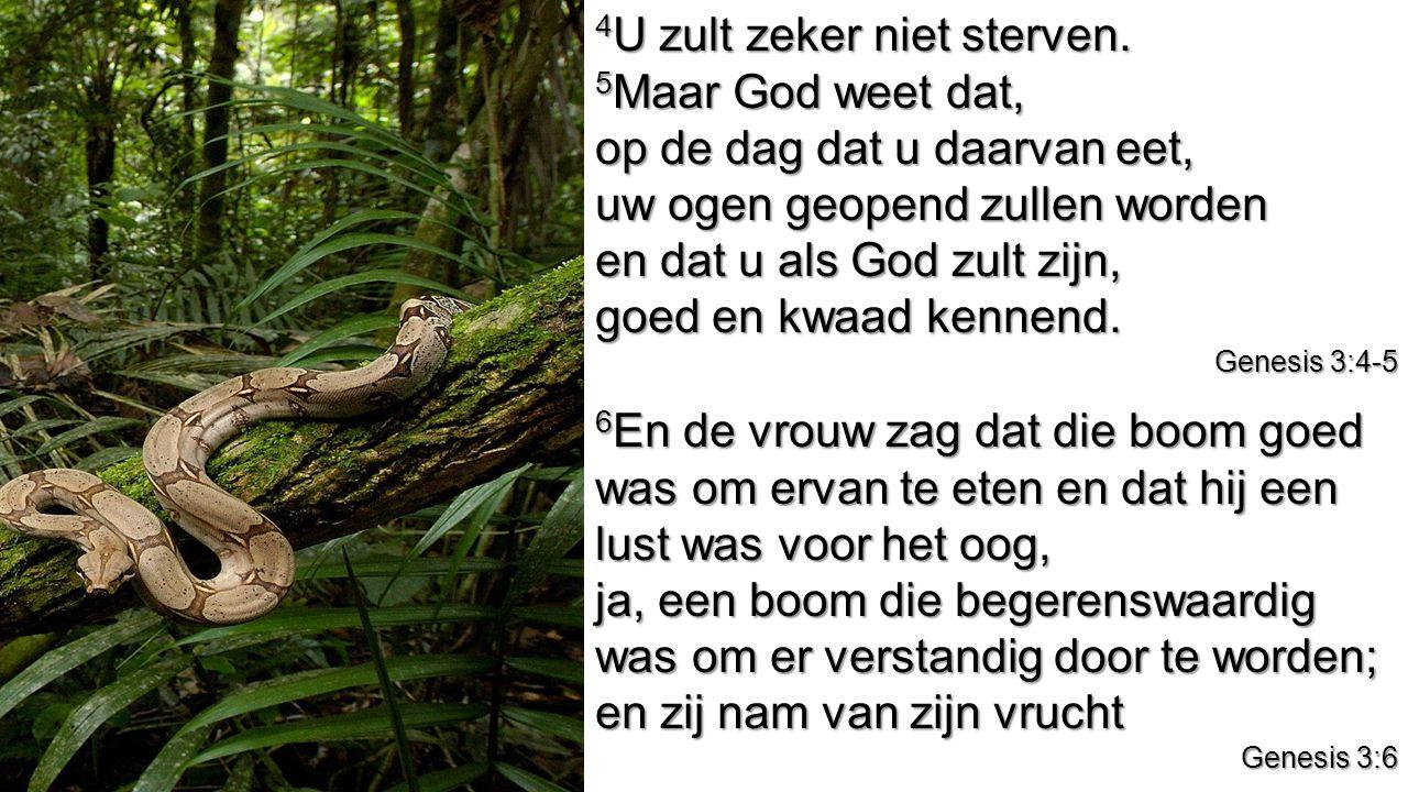 4 U zult zeker niet sterven. 5 Maar God weet dat, op de dag dat u daarvan eet, uw ogen geopend zullen worden en dat u als God zult zijn, goed en kwaad
