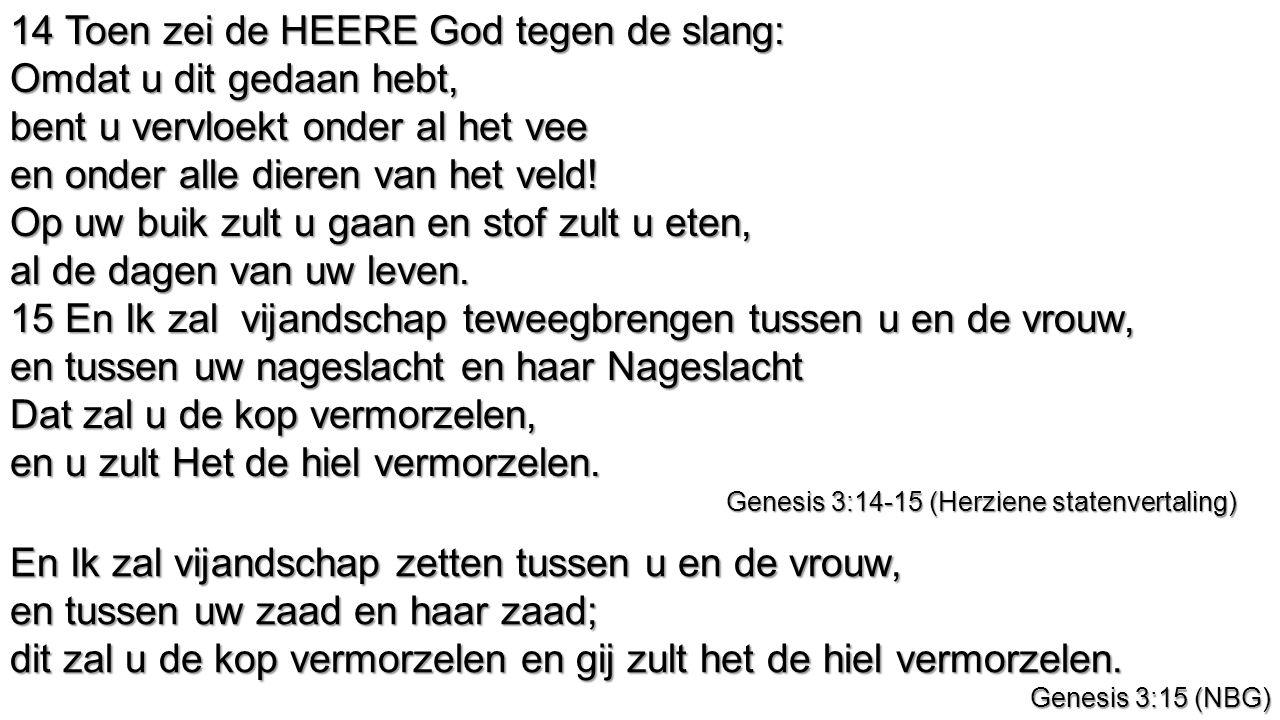 14 Toen zei de HEERE God tegen de slang: Omdat u dit gedaan hebt, bent u vervloekt onder al het vee en onder alle dieren van het veld! Op uw buik zult