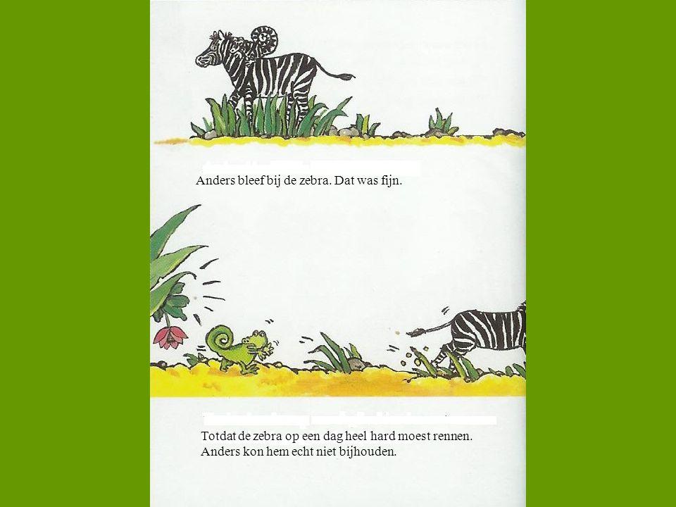 Anders bleef bij de zebra. Dat was fijn. Totdat de zebra op een dag heel hard moest rennen. Anders kon hem echt niet bijhouden.
