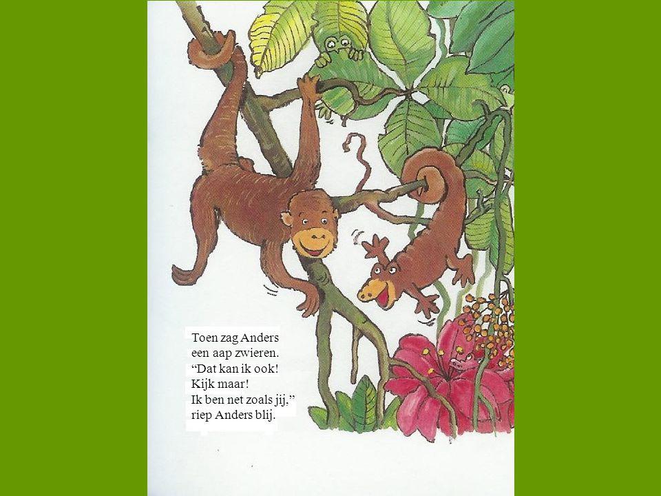 """Toen zag Anders een aap zwieren. """"Dat kan ik ook! Kijk maar! Ik ben net zoals jij,"""" riep Anders blij."""