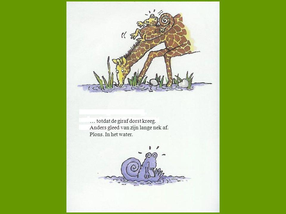… totdat de giraf dorst kreeg. Anders gleed van zijn lange nek af. Plons. In het water.