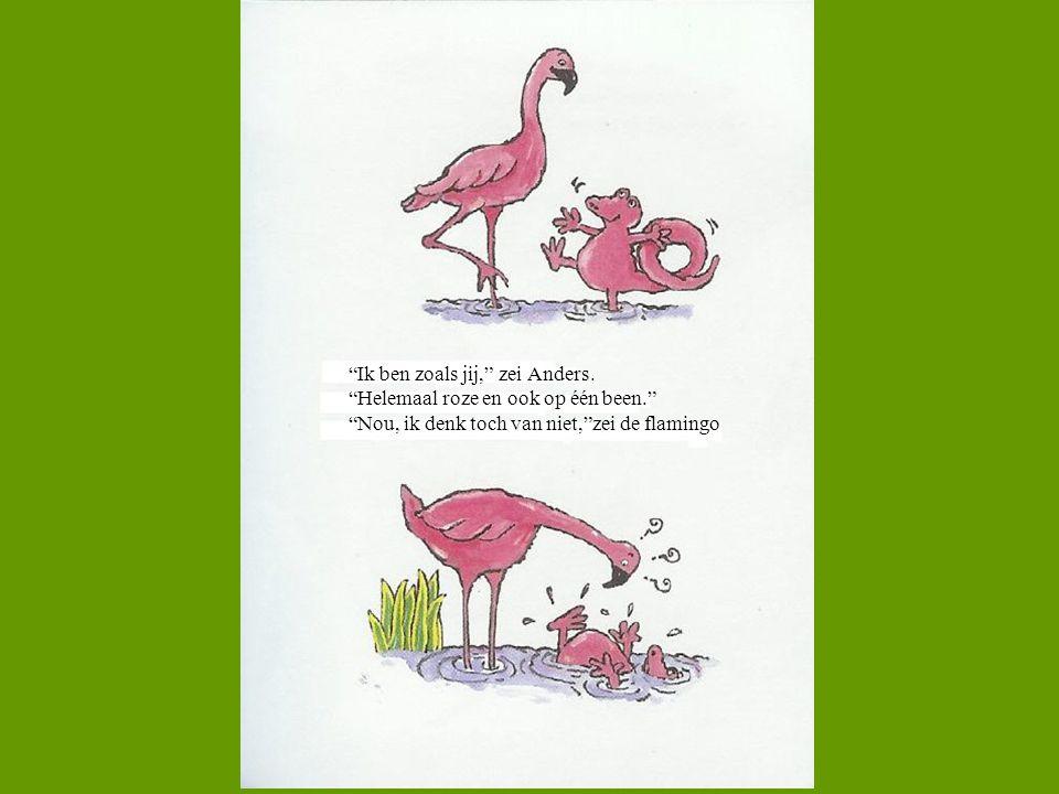 """""""Ik ben zoals jij,"""" zei Anders. """"Helemaal roze en ook op één been."""" """"Nou, ik denk toch van niet,""""zei de flamingo"""