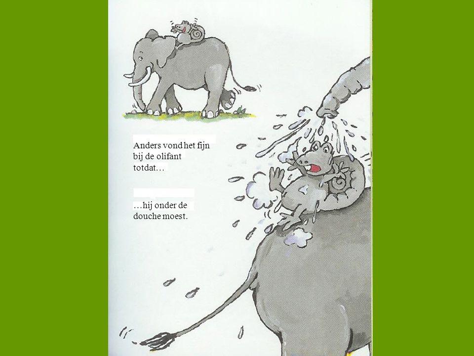 Anders vond het fijn bij de olifant totdat… …hij onder de douche moest.