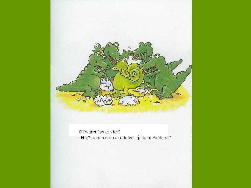 """Of waren het er vier? """"Hé,"""" riepen de krokodillen, """"jij bent Anders!"""""""