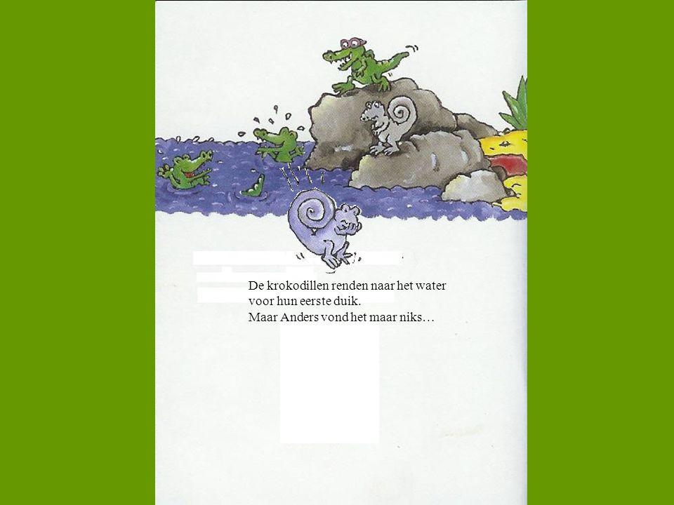 De krokodillen renden naar het water voor hun eerste duik. Maar Anders vond het maar niks…