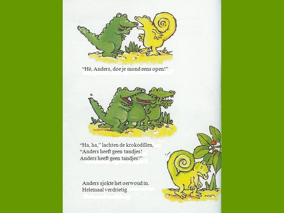 """""""Hé, Anders, doe je mond eens open!"""" """"Ha, ha,"""" lachten de krokodillen, """"Anders heeft geen tandjes! Anders heeft geen tandjes!"""" Anders sjokte het oerwo"""