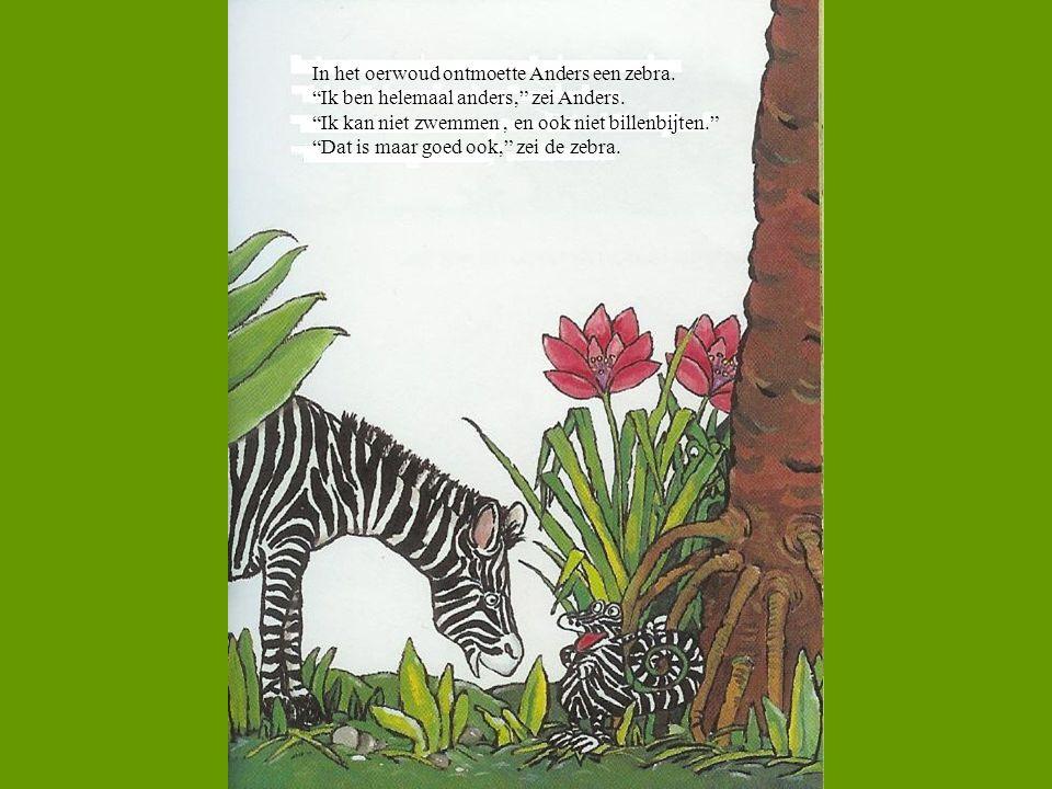 """In het oerwoud ontmoette Anders een zebra. """"Ik ben helemaal anders,"""" zei Anders. """"Ik kan niet zwemmen, en ook niet billenbijten."""" """"Dat is maar goed oo"""