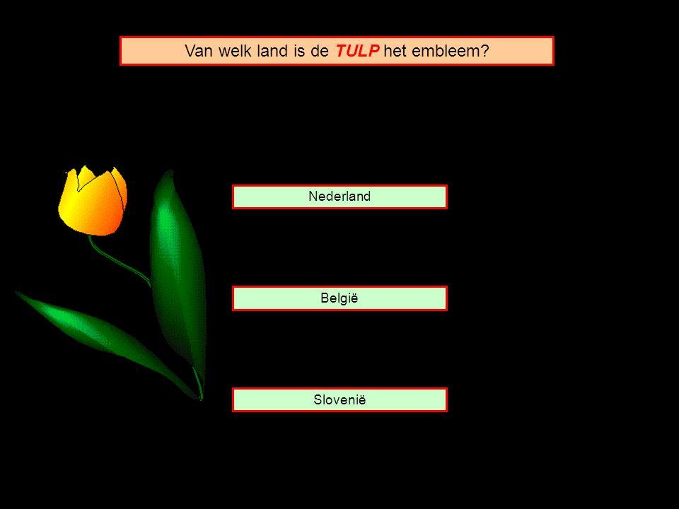 Nederland België Slovenië Van welk land is de TULP het embleem?