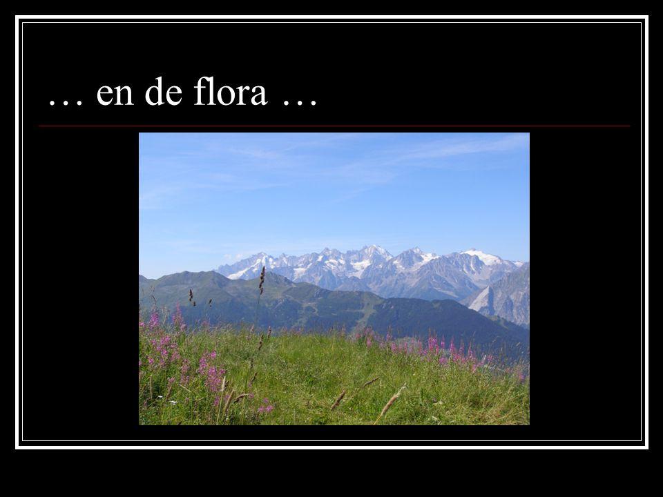 … en de flora …