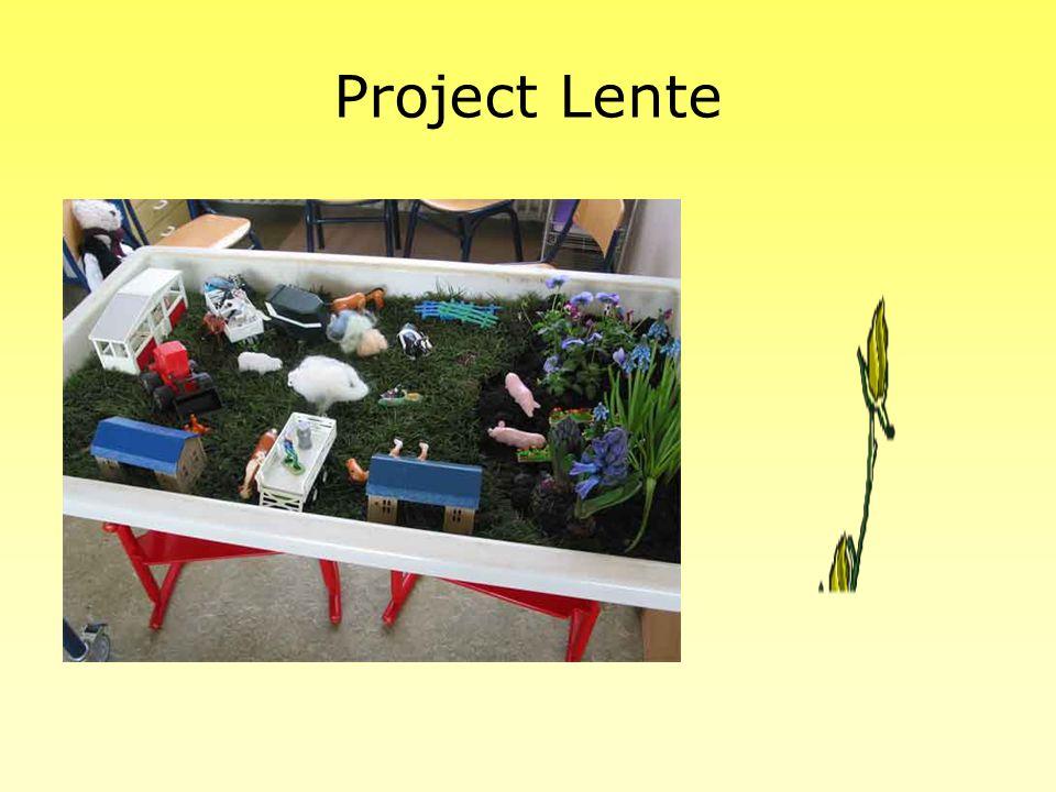 Project vies en schoon