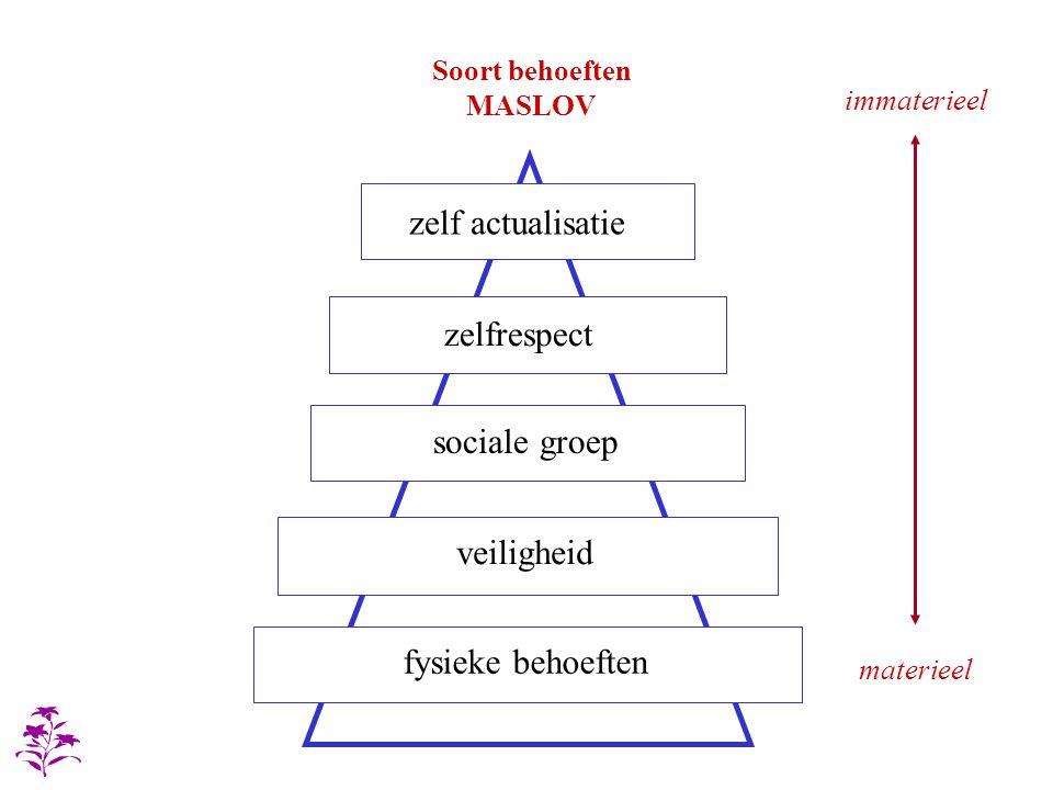 veiligheid sociale groep zelfrespect fysieke behoeften zelf actualisatie materieel immaterieel Soort behoeften MASLOV