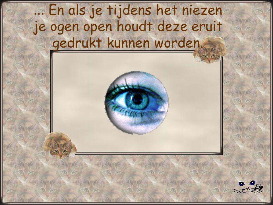 ... En als je tijdens het niezen je ogen open houdt deze eruit gedrukt kunnen worden.