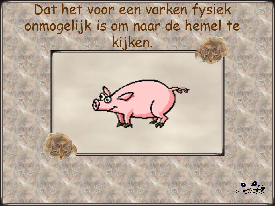 Dat het voor een varken fysiek onmogelijk is om naar de hemel te kijken.