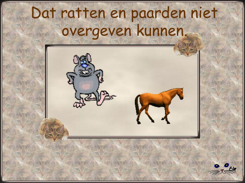 Dat ratten en paarden niet overgeven kunnen.