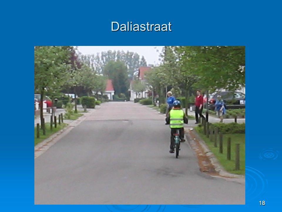 18 Daliastraat