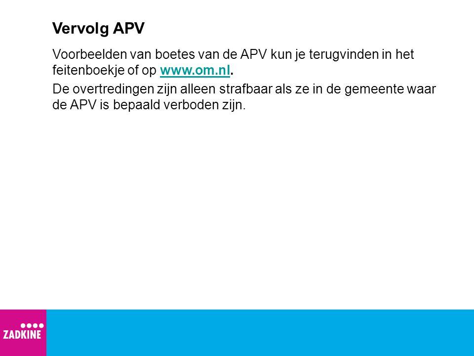 Vervolg APV Voorbeelden van boetes van de APV kun je terugvinden in het feitenboekje of op www.om.nl.www.om.nl De overtredingen zijn alleen strafbaar