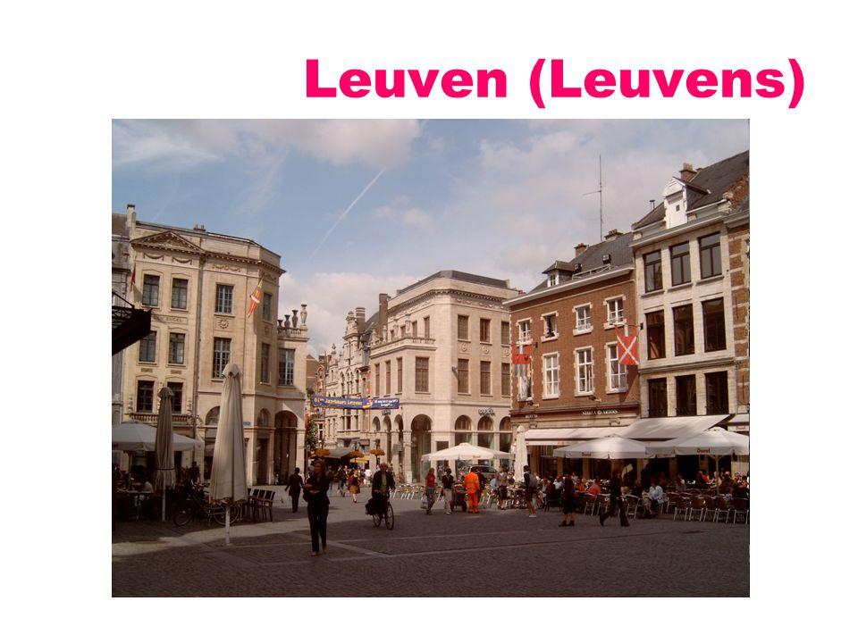Leuven: universiteitsstad