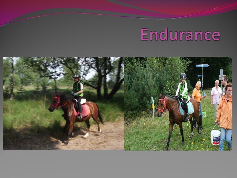 Waar ik het over ga hebben inleiding trainen klasses/snelheid/leeftijd paard/leeftijd ruiter voor de wedstrijd tijdens de wedstrijd na de wedstrijd 3vragen Hebben jullie nog vragen