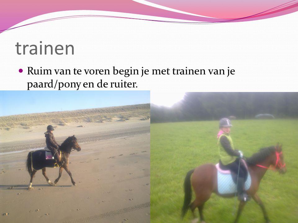 trainen Ruim van te voren begin je met trainen van je paard/pony en de ruiter.