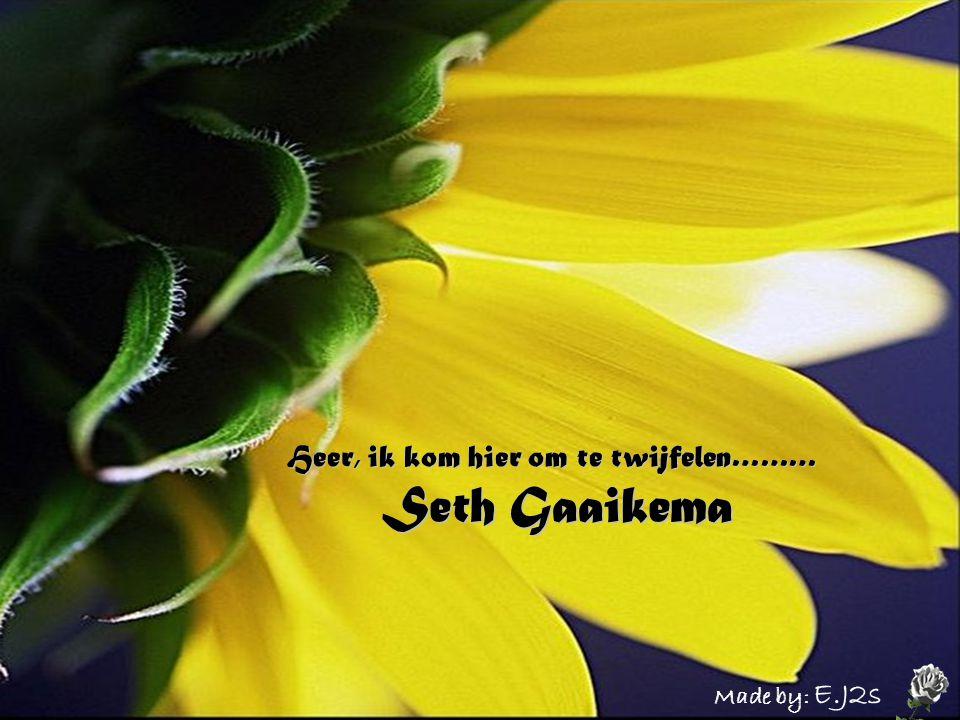 Heer, ik kom hier om te twijfelen……… Seth Gaaikema Made by: E.J2s