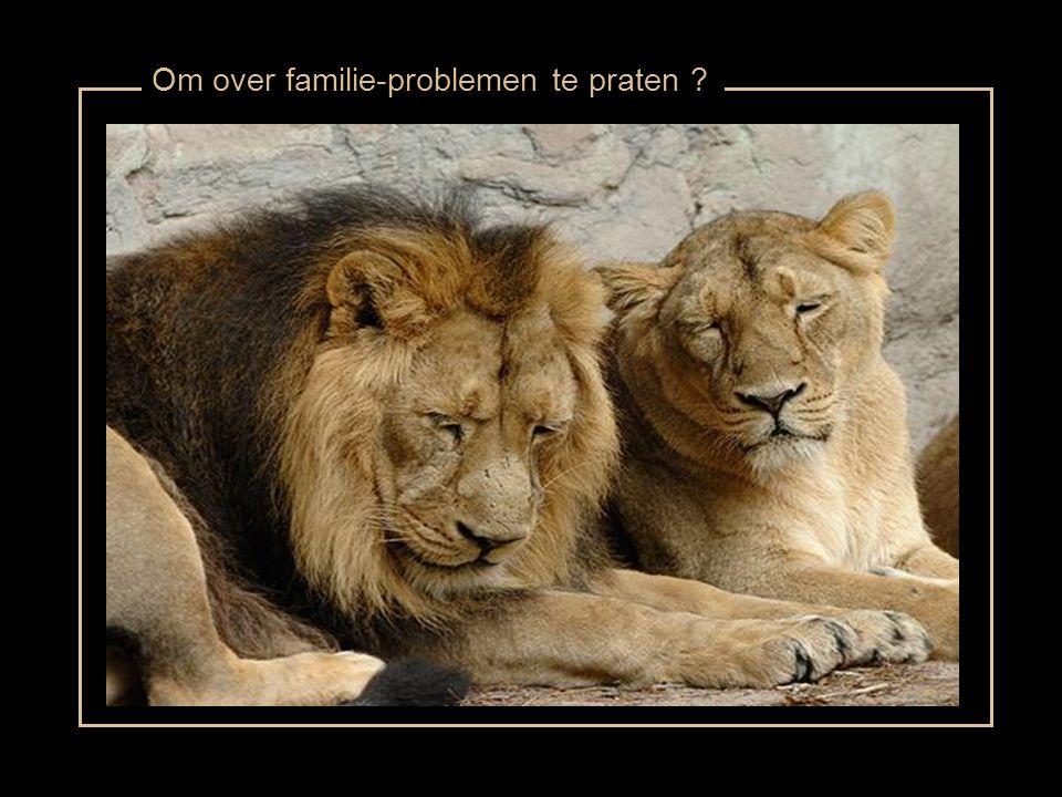 Om over familie-problemen te praten ?