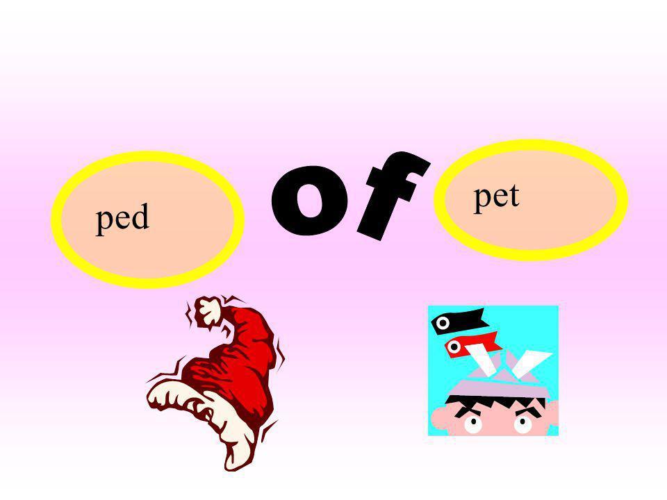 pet ped