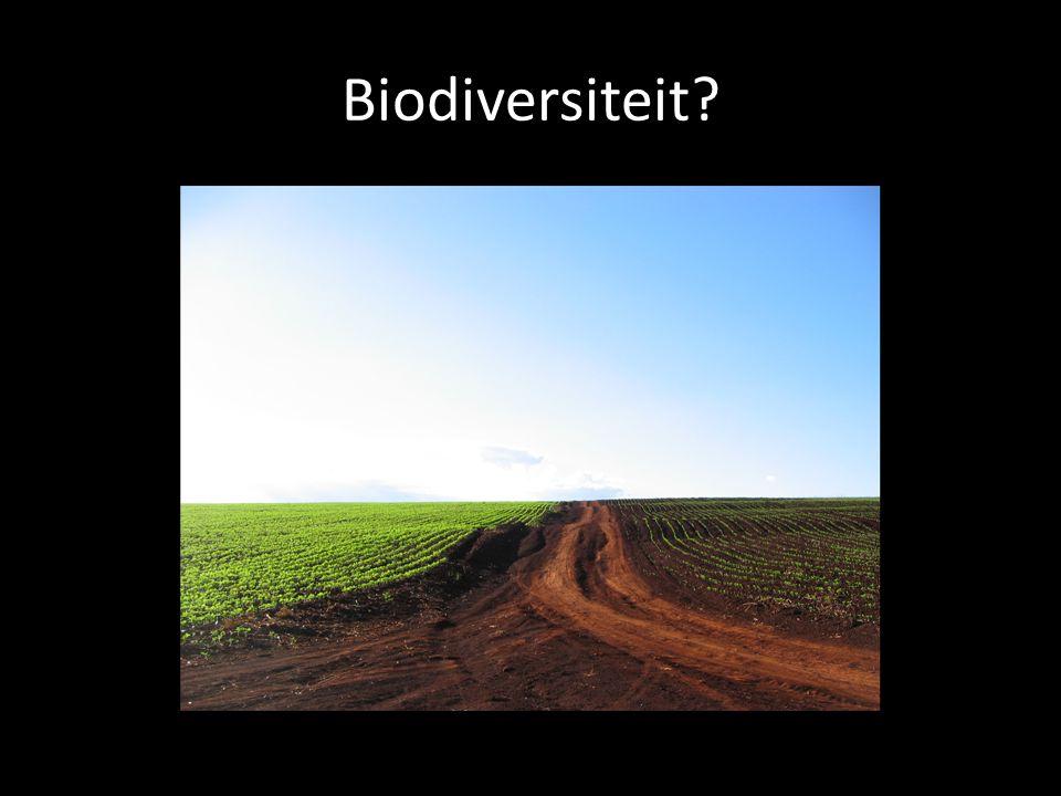 Biodiversiteit?