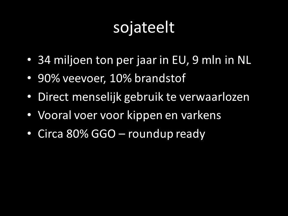 sojateelt 34 miljoen ton per jaar in EU, 9 mln in NL 90% veevoer, 10% brandstof Direct menselijk gebruik te verwaarlozen Vooral voer voor kippen en varkens Circa 80% GGO – roundup ready