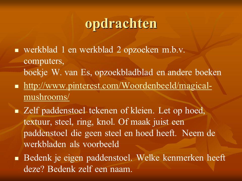 opdrachten werkblad 1 en werkblad 2 opzoeken m.b.v. computers, boekje W. van Es, opzoekbladblad en andere boeken http://www.pinterest.com/Woordenbeeld