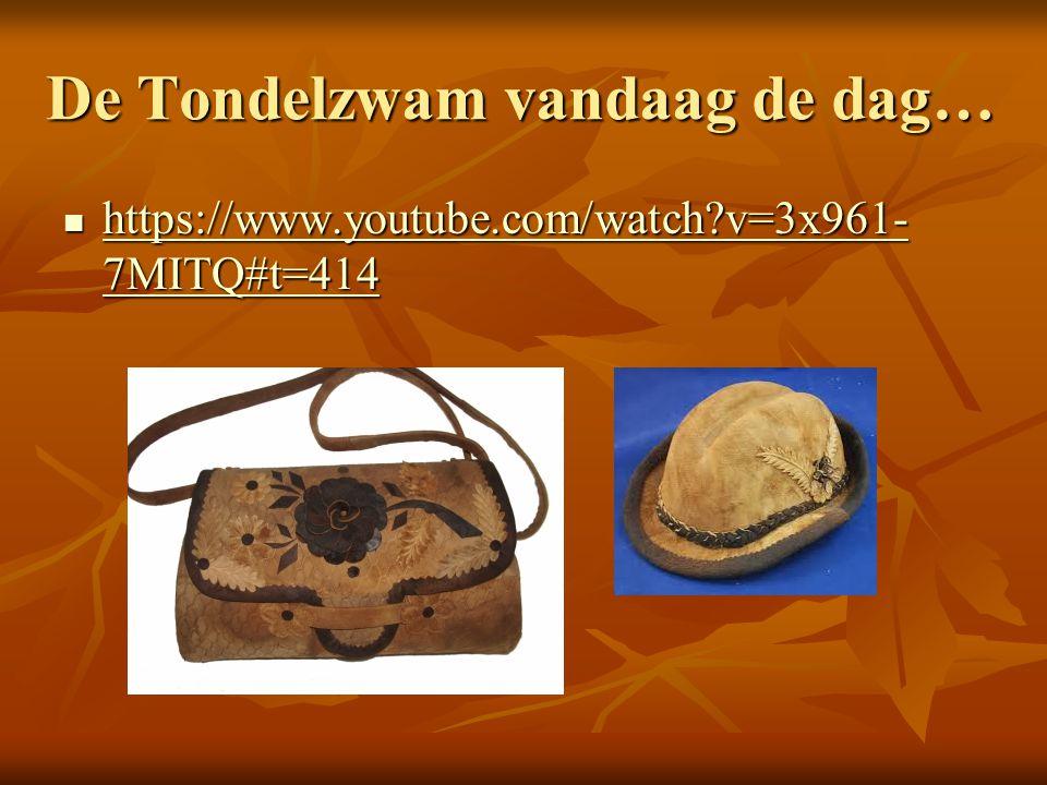 De Tondelzwam vandaag de dag… https://www.youtube.com/watch?v=3x961- 7MITQ#t=414 https://www.youtube.com/watch?v=3x961- 7MITQ#t=414 https://www.youtub