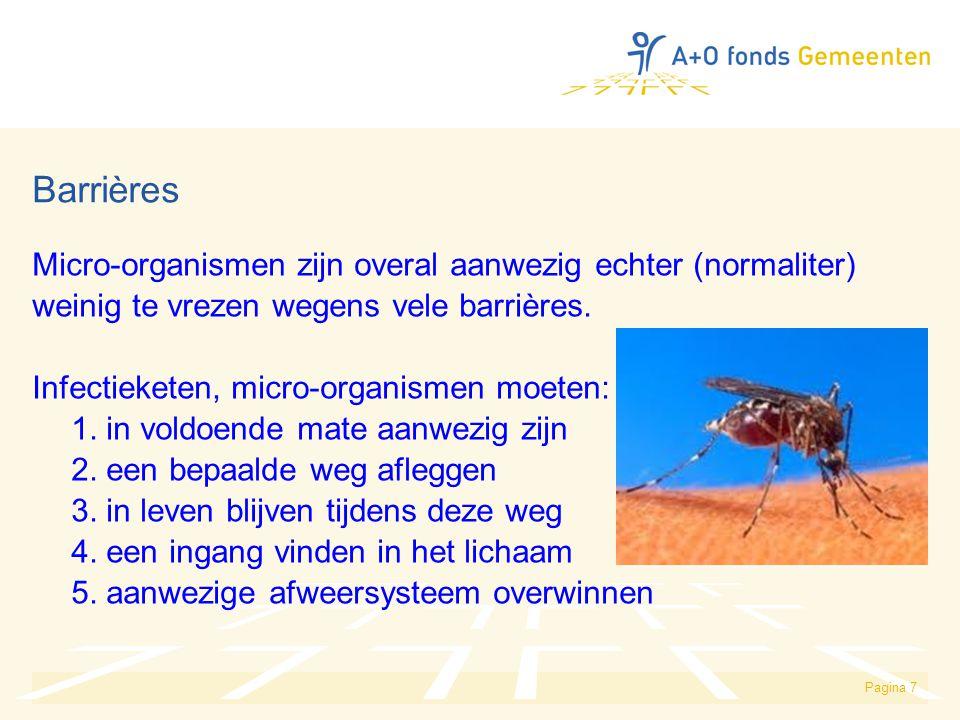 Pagina 7 Barrières Micro-organismen zijn overal aanwezig echter (normaliter) weinig te vrezen wegens vele barrières. Infectieketen, micro-organismen m