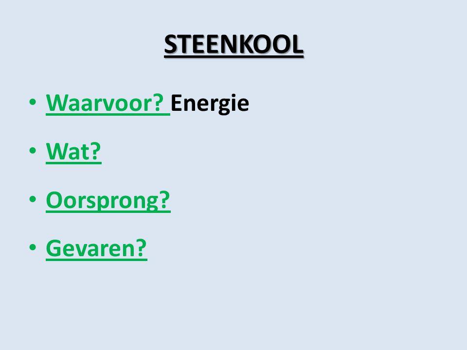 STEENKOOL Waarvoor? Energie Wat? Oorsprong? Gevaren?