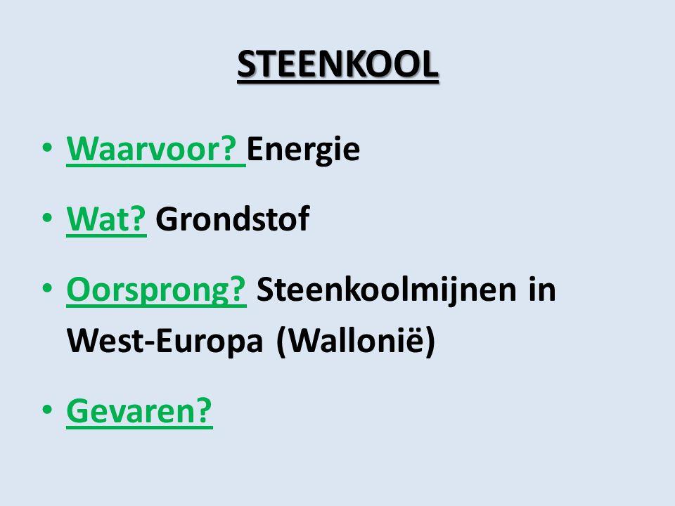 STEENKOOL Waarvoor? Energie Wat? Grondstof Oorsprong? Steenkoolmijnen in West-Europa (Wallonië) Gevaren?