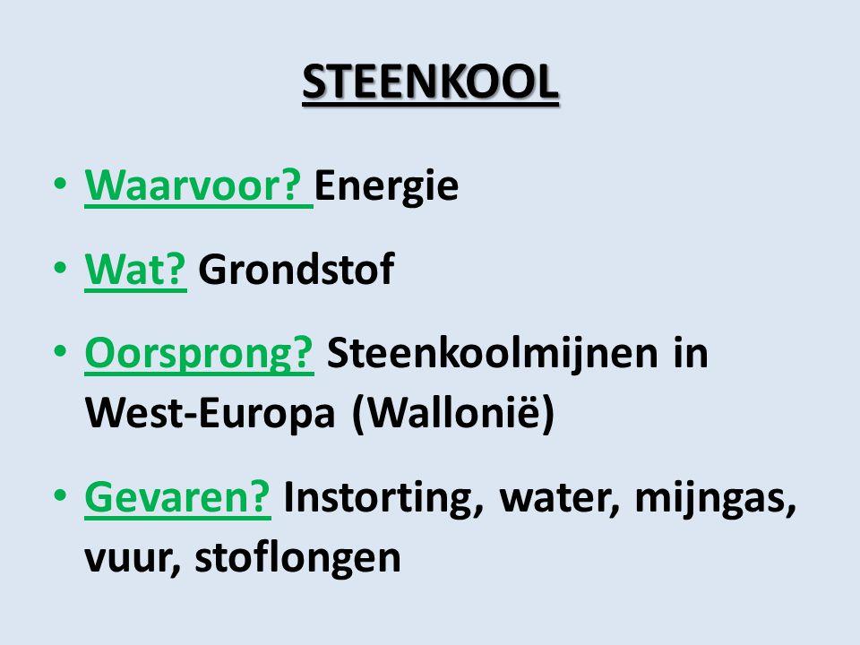 STEENKOOL Waarvoor? Energie Wat? Grondstof Oorsprong? Steenkoolmijnen in West-Europa (Wallonië) Gevaren? Instorting, water, mijngas, vuur, stoflongen