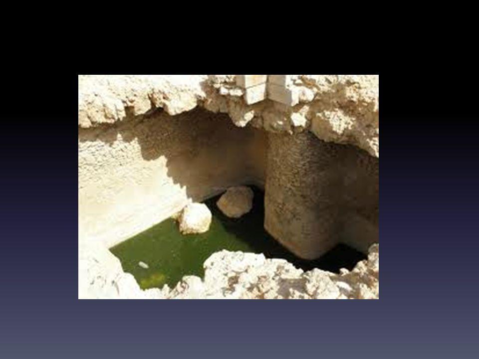 Bak of bron … Dit weten (hoofd) is als stilstaand water – Gaat groen worden en stinken Van hieruit leven (hart) is als een bron – Bewegend water dat leeft en zuurstofrijk is Dat is: je ID = je koninklijke mantel Dat is: bekleed met Jezus voor God staan Dat is: de scepter krijgen voor je plannen en verlangen Dat is: gaan en staan