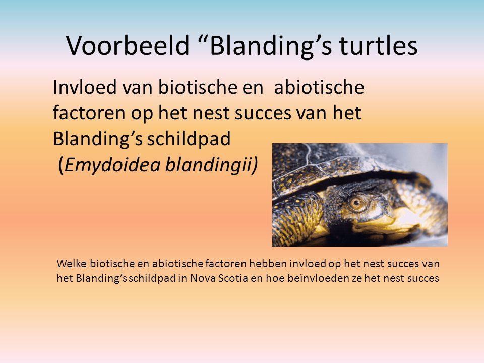 """Voorbeeld """"Blanding's turtles Invloed van biotische en abiotische factoren op het nest succes van het Blanding's schildpad (Emydoidea blandingii) Welk"""
