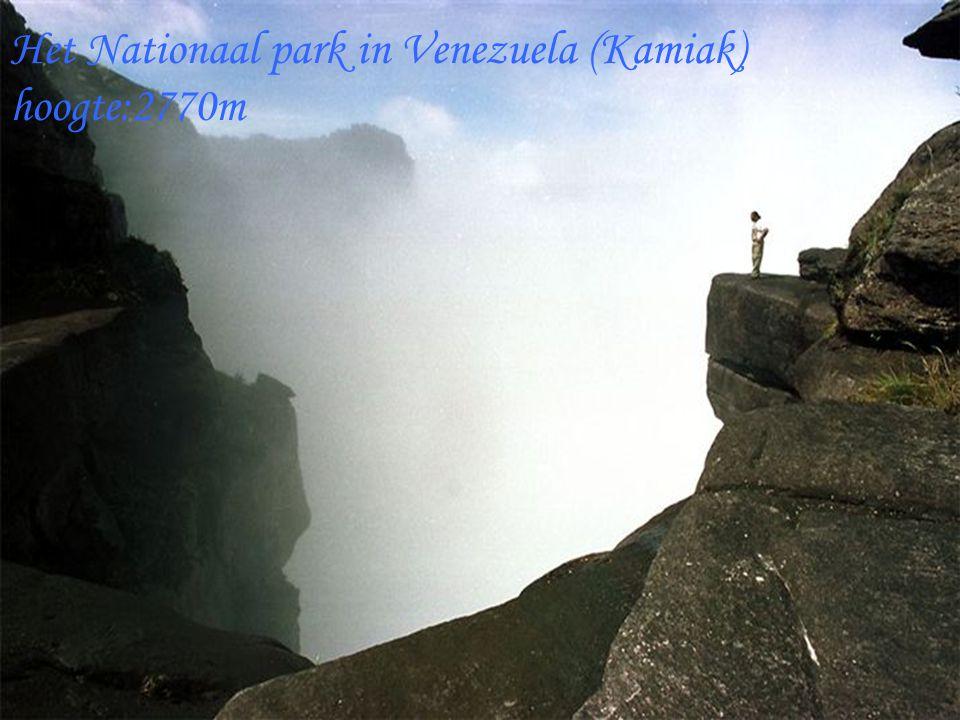 Het Nationaal park in Venezuela (Kamiak) hoogte:2770m