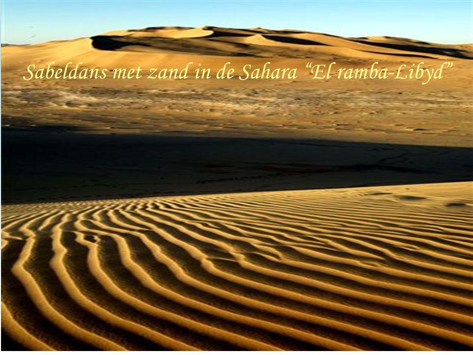Sabeldans met zand in de Sahara El ramba-Libyd