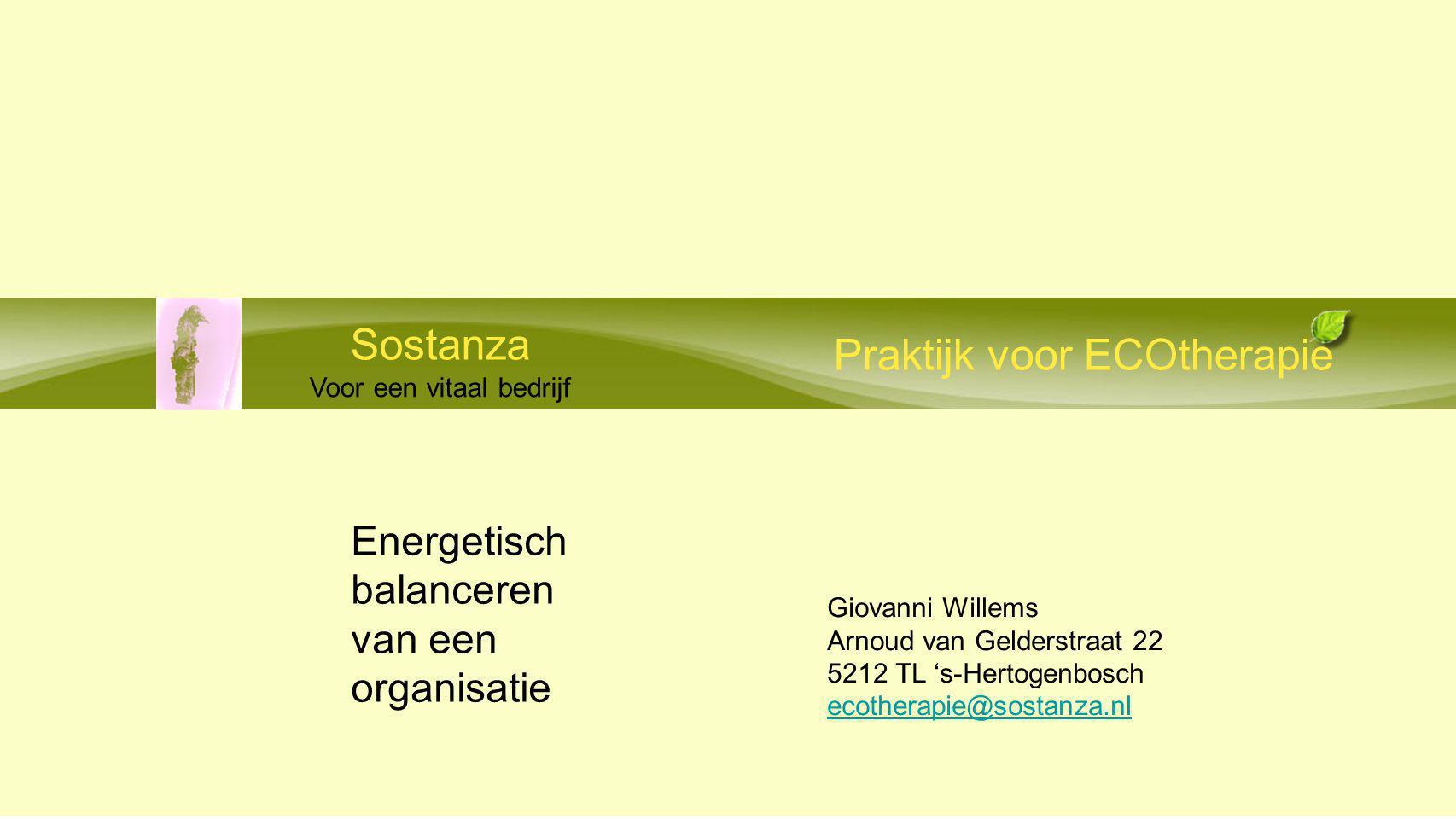 Praktijk voor ECOtherapie Sostanza Voor een vitaal bedrijf Energetisch balanceren van een organisatie Giovanni Willems Arnoud van Gelderstraat 22 5212 TL 's-Hertogenbosch ecotherapie@sostanza.nl