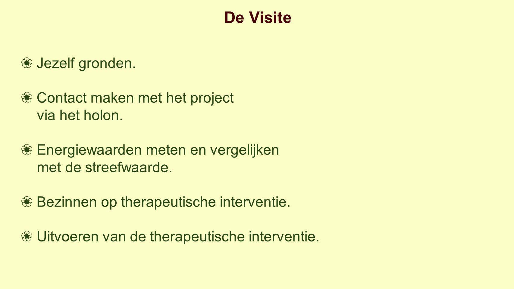 De Visite ❀ Jezelf gronden. ❀ Contact maken met het project via het holon.