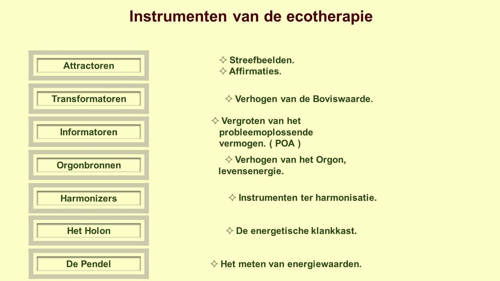 Instrumenten van de ecotherapie TransformatorenInformatorenOrgonbronnenHarmonizersHet HolonDe Pendel ✧ Streefbeelden.