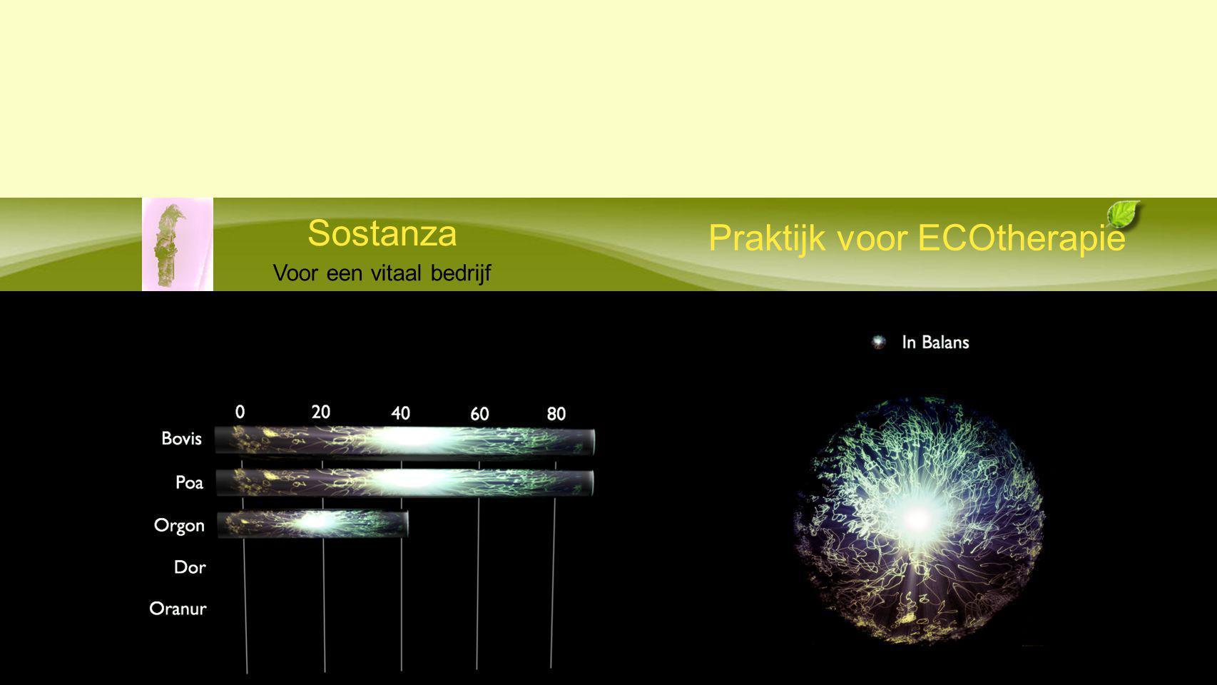 Praktijk voor ECOtherapie Sostanza Voor een vitaal bedrijf