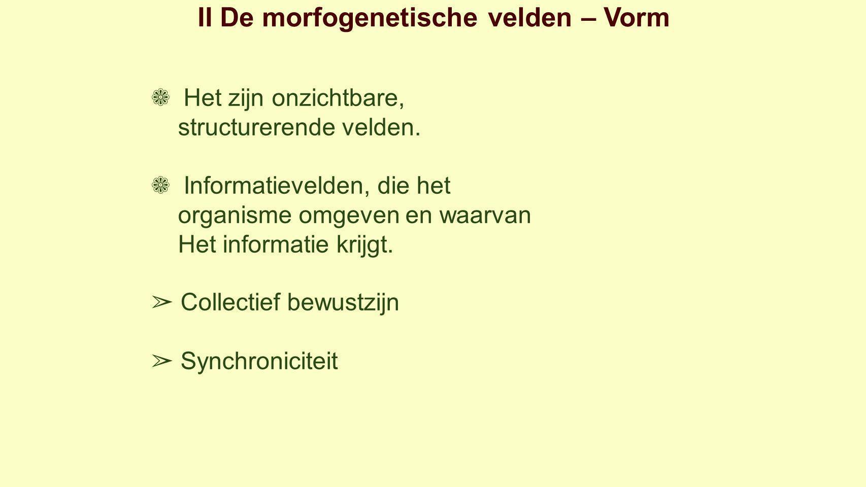 II De morfogenetische velden – Vorm ❁ Het zijn onzichtbare, structurerende velden.