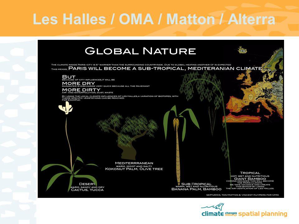 Les Halles / OMA / Matton / Alterra